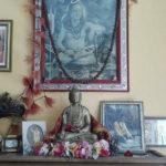 dharma-joga-2